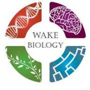bio orga